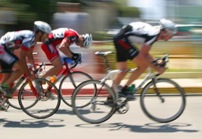 Endurance Sports Training Programs in Gainesville, Florida